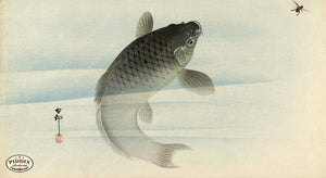 PDXC19663 -- Japanese Fish Woodblock