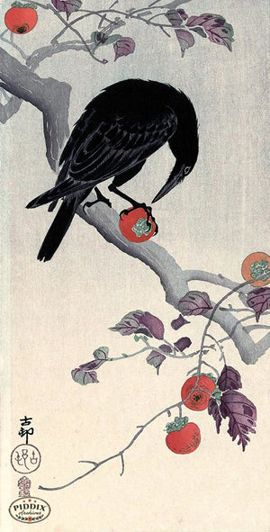 PDXC19669 -- Japanese Raven and Persimmons Woodblock