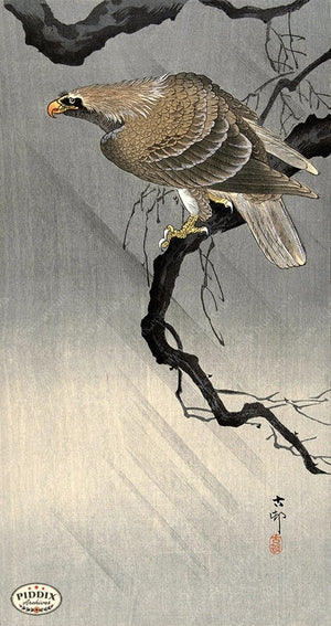 PDXC19682 -- Japanese Bird Woodblock