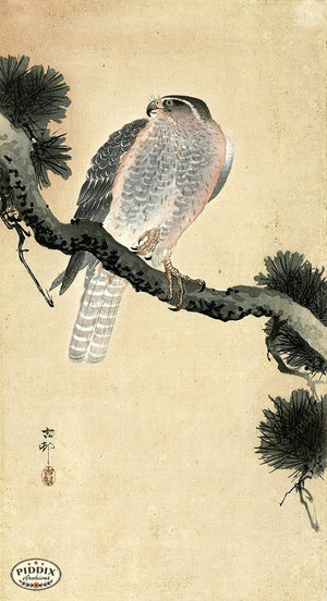 PDXC19687 -- Japanese Bird Woodblock