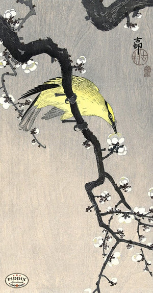 PDXC19692 -- Japanese Bird and Flowers Woodblock