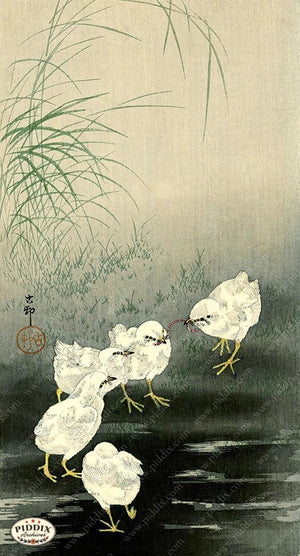 PDXC19699 -- Japanese Birds Woodblock