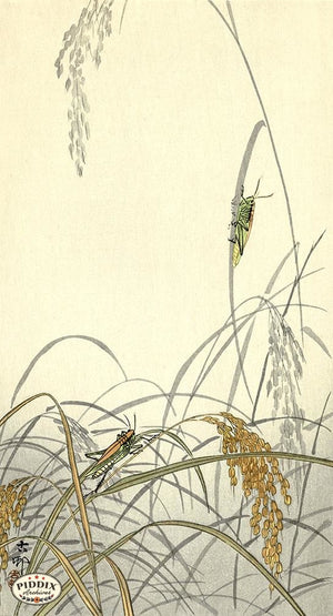 PDXC19704 -- Japanese Grasshoppers Woodblock