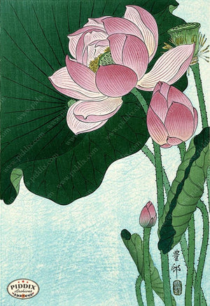 PDXC19711 -- Japanese Lotus Flower Woodblock
