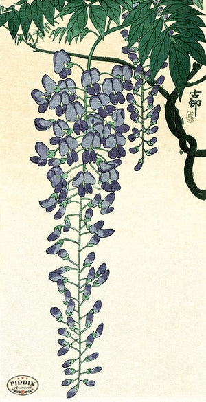 PDXC19730 -- Japanese Wisteria Woodblock
