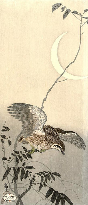 PDXC19733 -- Japanese Bird and Moon Woodblock