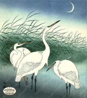 PDXC19750 -- Japanese Birds Woodblock