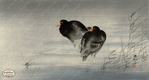 PDXC19752 -- Japanese Birds and Water Woodblock