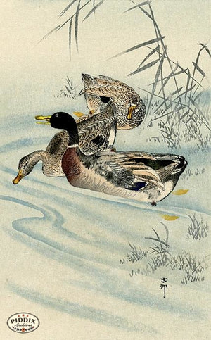 PDXC19754 -- Japanese Ducks and Water Woodblock