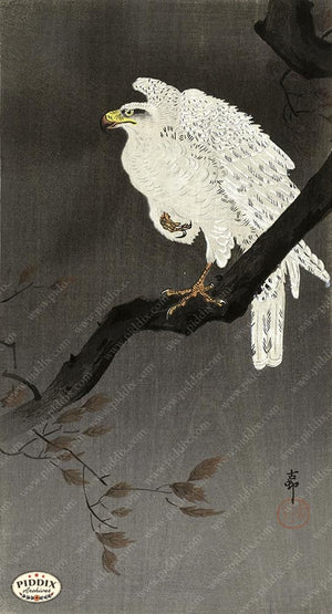 PDXC19755 -- Japanese Hawk Woodblock