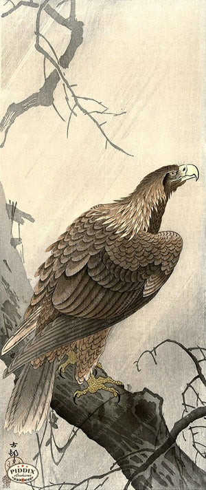 PDXC19766 -- Japanese Eagle Woodblock
