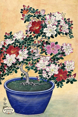 PDXC19796-- Japanese Flowering Bonsai Woodblock