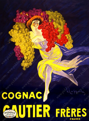 Pdxc3609 -- Alcohol & Wine Poster