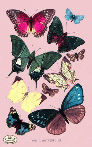 Pdxc4180B -- Bright Butterflies Original Collage