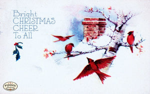 Pdxc4549 -- Christmas Birds Color Illustration