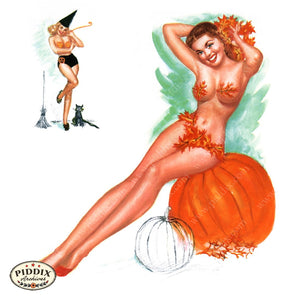 Pdxc4887 -- Pin-Ups Color Illustration