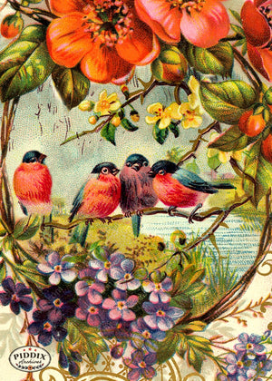 Pdxc5111A B & C -- Flora Fauna Original Collage