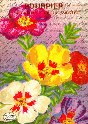 Pdxc5112 -- Flora & Fauna Original Collage