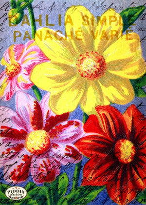 Pdxc5113 -- Flora & Fauna Original Collage