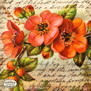 Pdxc5116A & B -- Flora Fauna Original Collage