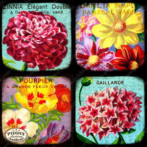Pdxc5154A -- French Seed Packets Original Collage