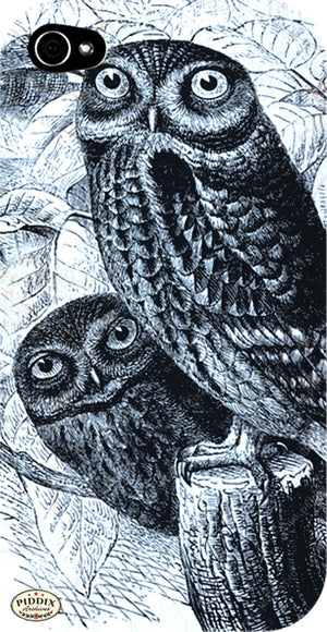 Pdxc5368B -- Birds Color Illustration
