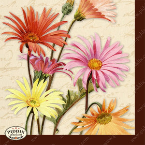 Pdxc5462 -- Original Flower Collages Collage