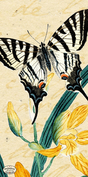 Pdxc5729 Butterfly Botanical Original Collage