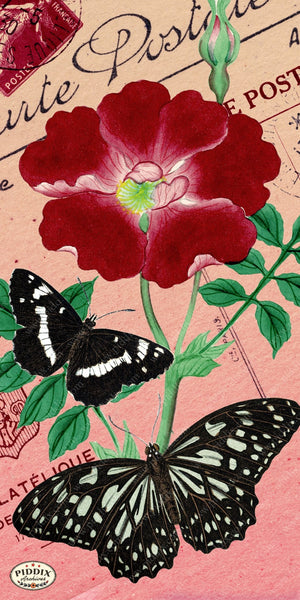 Pdxc5730 Butterfly Botanical Original Collage
