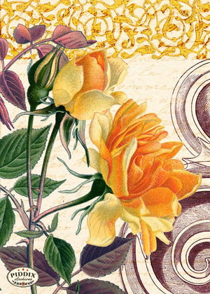 Pdxc5889 -- Original Flower Collages Collage