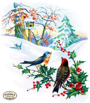 Pdxc6071 -- Christmas Birds Color Illustration