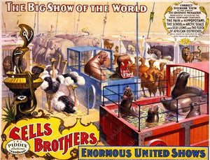 Pdxc7844 -- Circus Posters Poster