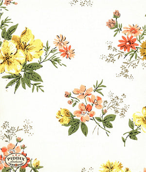 Pdxc8024 -- Mid-Century Patterns Color Illustration