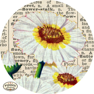 Pdxc9148B -- Original Flower Collages Collage