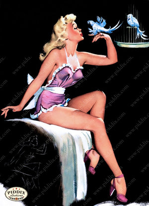 Pdxc9282 -- Pin-Ups Color Illustration