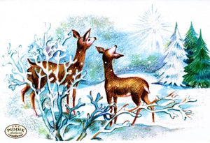 Pdxc9857A -- Christmas Deer Color Illustration