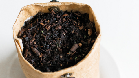 recycle used tea leaves   Life of Cha