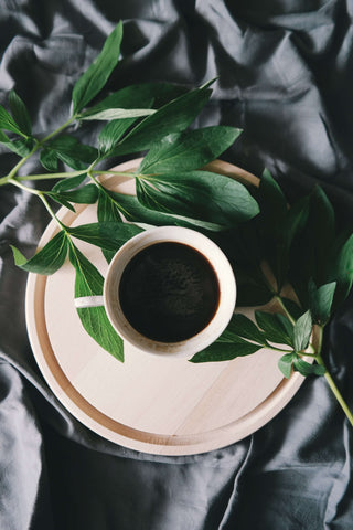 chicory coffee tea cup with green plants