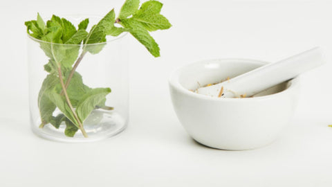 natural remedies and teas for migraines and headaches - peppermint tea