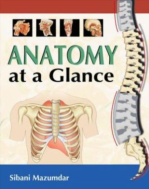 Anatomy at a Glance - ABC Books