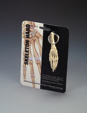 Hand & Wrist Key Ring - ABC Books