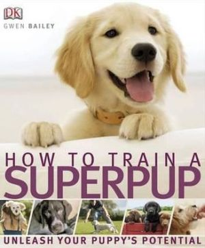 How to Train a Superpup - ABC Books