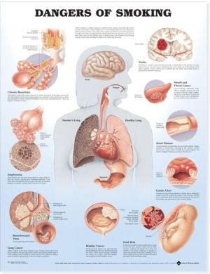 Dangers of Smoking Chart - ABC Books