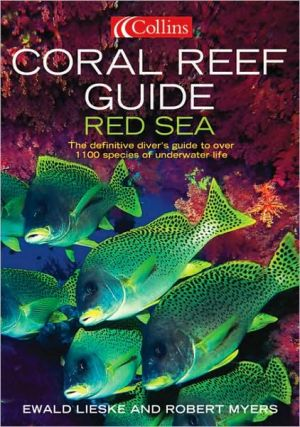 Coral Reef Guide Red Sea - ABC Books
