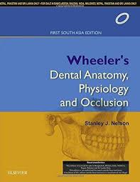 Nelson - Wheeler's Dental Anatomy, Physiology and Occlusion: First South Asia Edition, 1/e - ABC Books