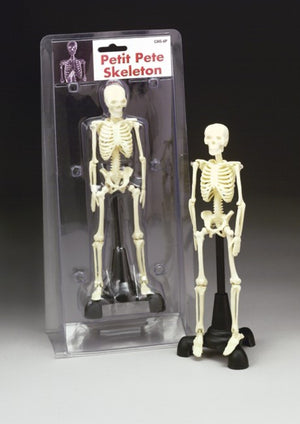 Petite Pete Skeleton 8 Inches - ABC Books
