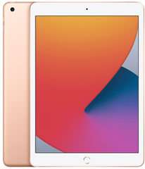 Apple iPad (8th Generation)