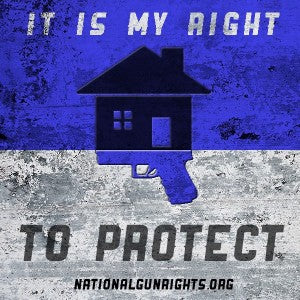 Second Amendment right to protection