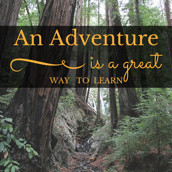 An adventure is a great way to learn quote