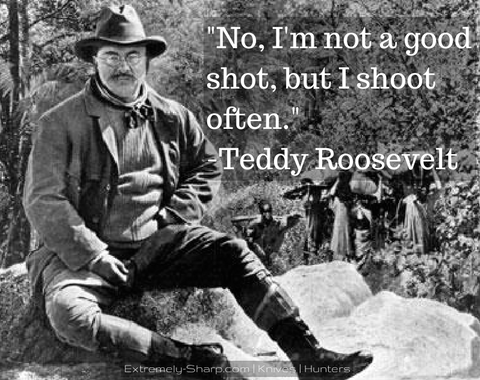 Not a good shot Teddy Roosevelt quote